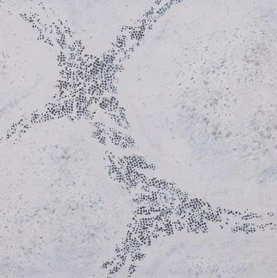 3'x3' G-Mat: Winter Realm. - 1