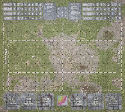 Grassy Pitch - 1