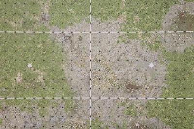Grassy Pitch - 5