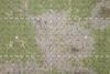 Grassy Pitch - 5/6